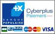 Mode de paiement alarmania - Cyberplus paiement net ...